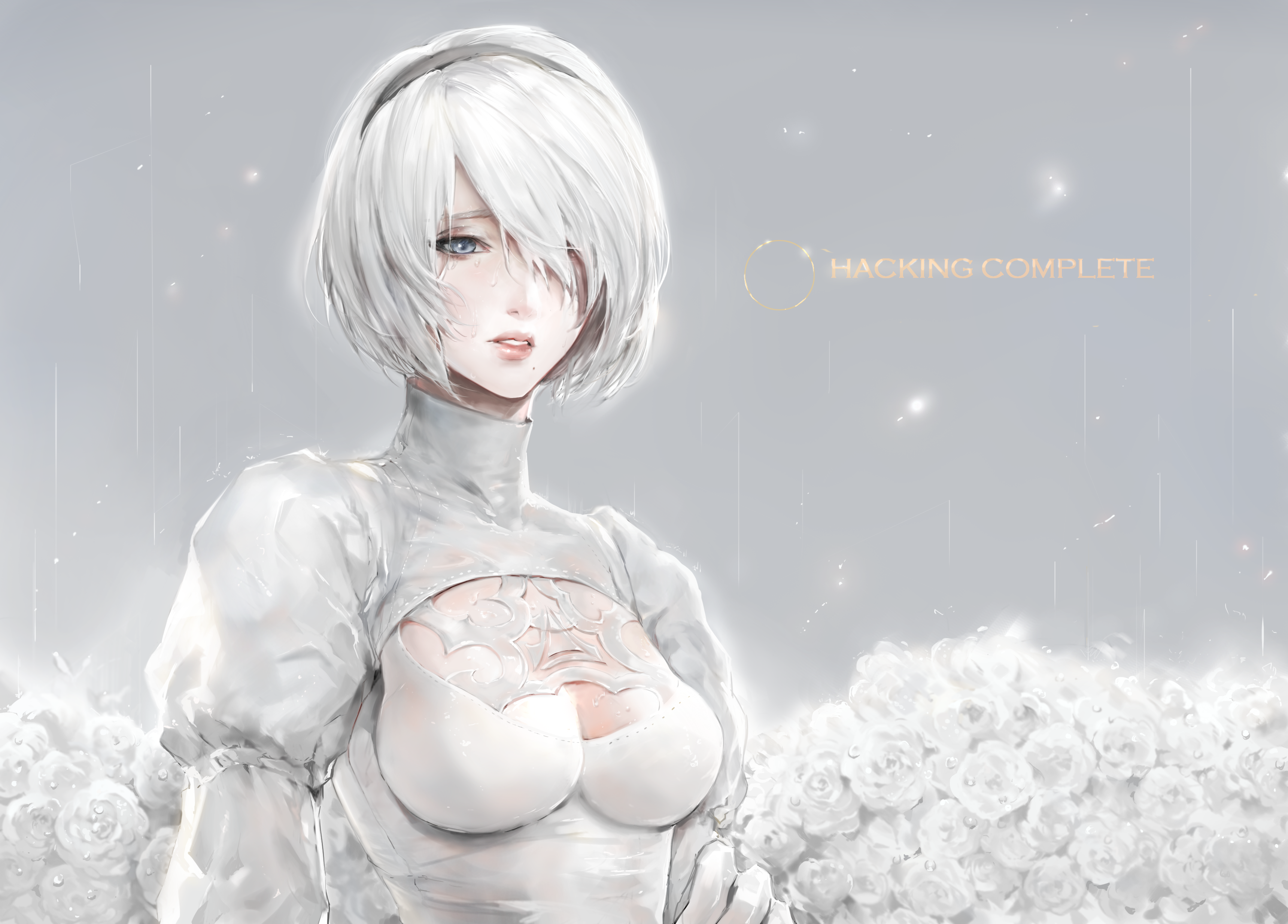 Share you a set of 2B wallpaper Full HD  for free download right here!